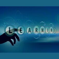 Digitale Tools in der Weiterbildung auf dem Vormarsch – auch bei Netzwerk Kadertraining